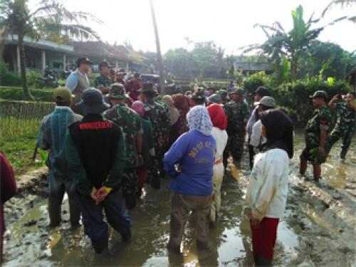Sinergitas Pemda, TNI dan Petani Cariu