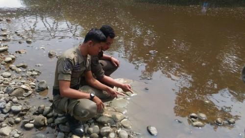 Bencana polusi Sungai Cibeet